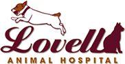 Lovell Animal Hospital